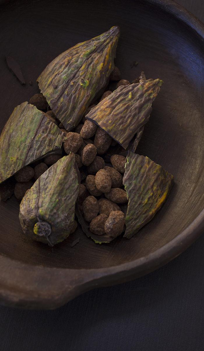 Fèves de cacao tout chocolat